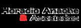 Horacio Anache & Asociados